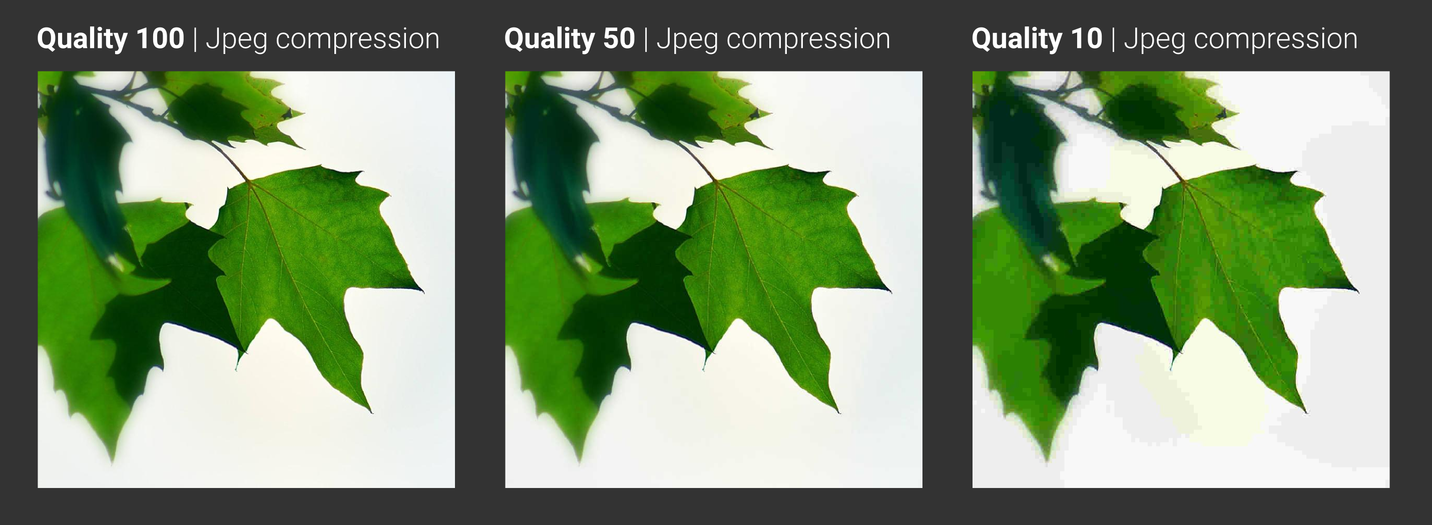 Jpg quality comparison
