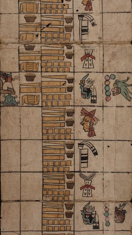 Codex Humboldt