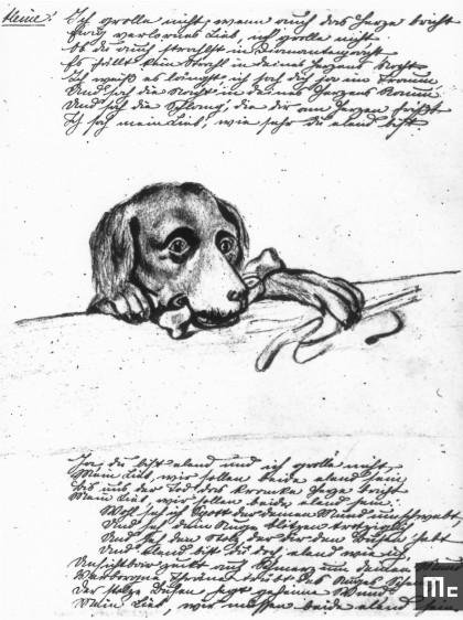 Extrait du journal intime de Maria Sklodowska. L'esquisse représente Lancet, le chien pointer, très aimé des jeunes Sklodowski (texte en polonais) (Source : Musée Curie ; coll. ACJC).