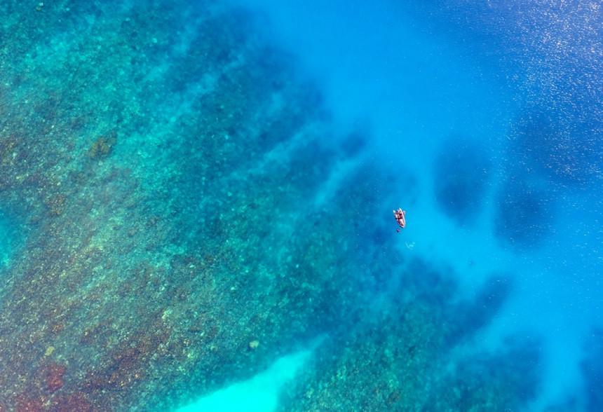 PSL-Explore_focus_Tara_corail