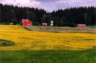 Rural landscape _ EHESS