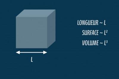 Aventures microfluidiques 1