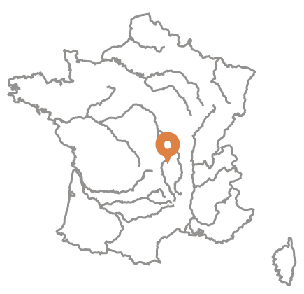 PSL-Explore_expo_virtuelle_carte_vase_figuration_animalière